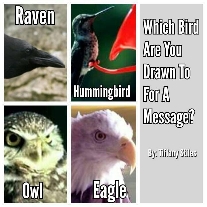 birdoracle