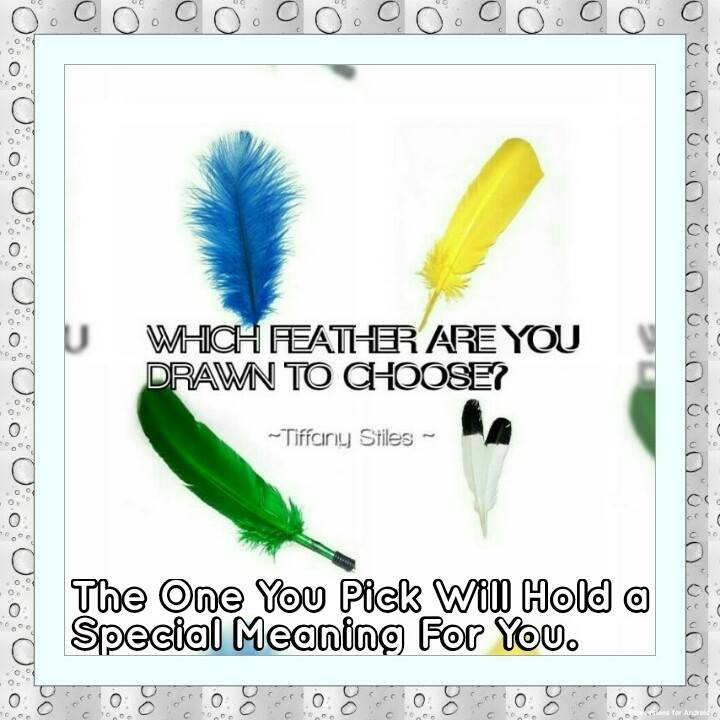 choosefeather
